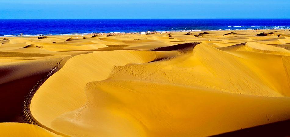 Visitas en Gran Canaria