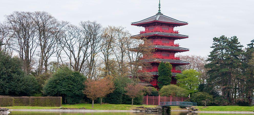Como es la Torre Japonesa